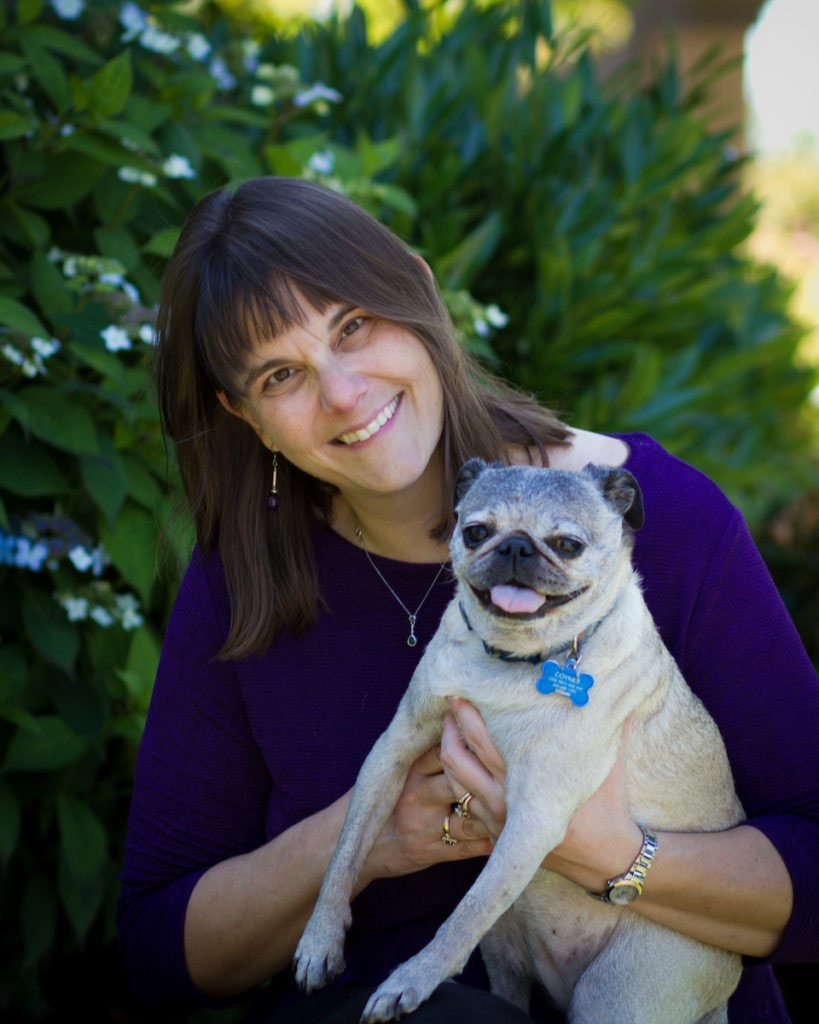 Our Team in Lacey, WA | Dermatology Clinic for Animals